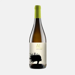 Vino Bianco At FRIULANO Aquila del Torre